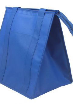 blue thermal bag for food delivery